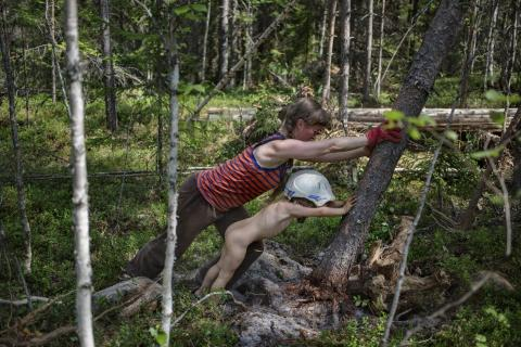 "Foto: Touko Hujanen ""Metsapere"" /yle.fi/"